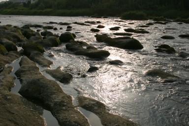 球磨川の朝