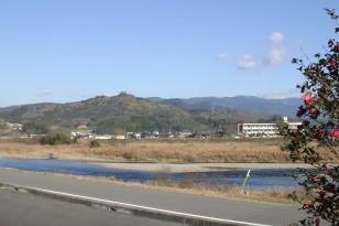 山茶花と球磨川と高山